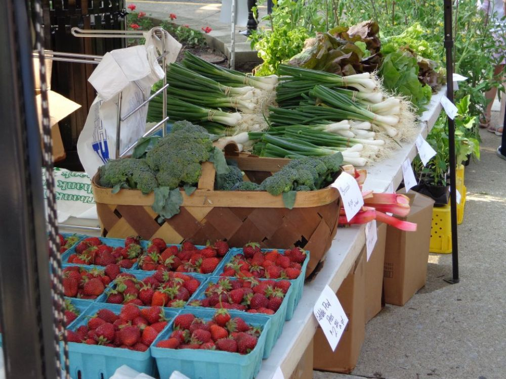 Enjoy Mt. Vernon - Farmers Market